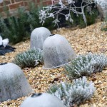 Bell cloches protecting tender plants in heavy frost