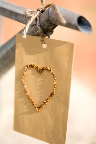 Heart of seeds on a brown envelope tied to spout of a galvanised watering can - © Lynn Keddie/GAP Photos