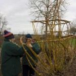 Living Willow Sculpting