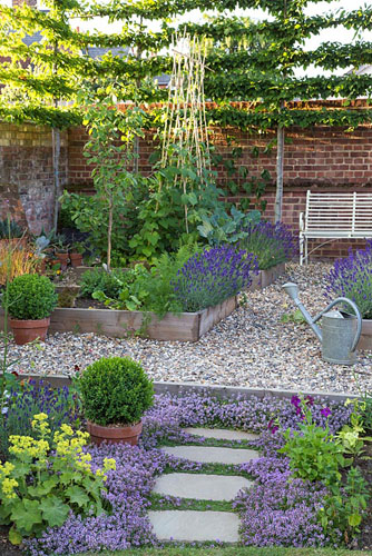 Potager with raised beds of vegetables and lavender bench for Borde plastico para jardin