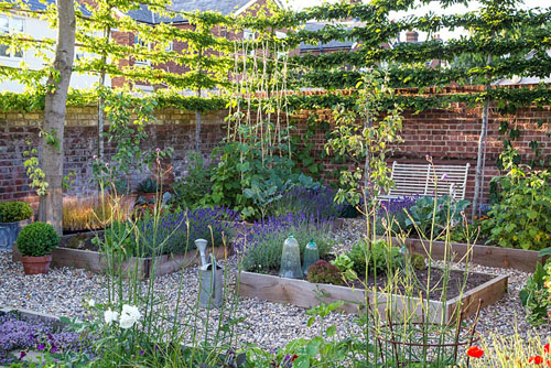 Potager in summer with raised beds and bench - © GAP Photos