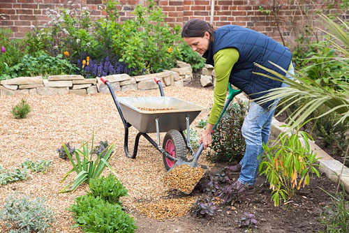 Sand Backyard Maintenance : Creating a Gravel Garden Spreading gravel across the soil ? ? GAP