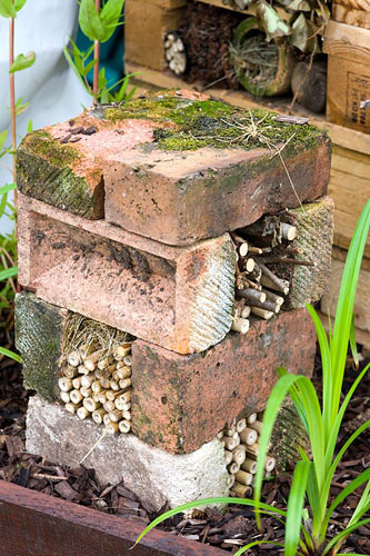 Bug hotel made from bricks and bamboo - © Lee Avison/GAP Photos