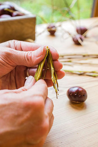 Creating Conker spiders for halloween decorations. Bending legs to shape - © GAP Photos