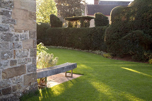Contemporary clipped Yew hedge alongside lawn with bench - Farrs - © Abigail Rex/GAP Photos
