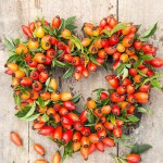 Making a heart shaped rosehip wreath. Completed wreath