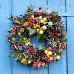 Autumn wreath made from hedgerow plants - malus, crataegus, rosa, rubus fruitcosa