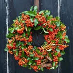 Wreath made from pyracantha berries