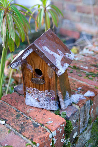 Leaving the birdhouse to dry before putting back on the wall - © Mark Winwood/GAP Photos