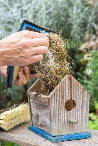 Cleaning a Birdhouse. Remove nesting material from inside the birdhouse - © GAP Photos