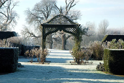Rose Arbour with Rosa 'Irene Watts' at the foot of the arbour and Taxus - yew hedges in the Rose Garden with Frost in December - © Zara Napier/GAP Photos