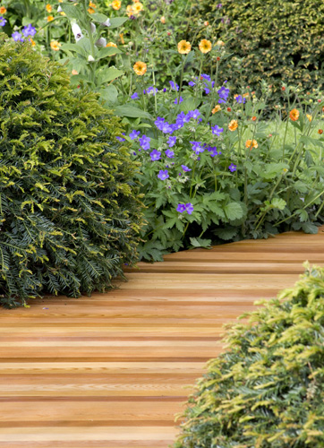 Chelsea 2015 trends gap gardens blog for Garden trees homebase
