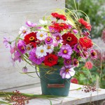 Cut flower arrangement of Zinnia, Cosmos and grasses in a turquoise bucket