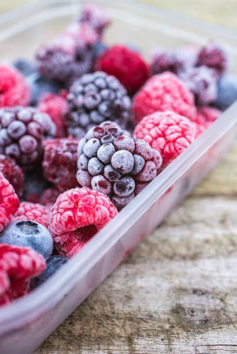 Frozen Summer Fruits. Plastic container full of frozen foraged berries. Featuring Blueberries - Vaccinium, Raspberries and Blackberries - Rubus fruticosus - © GAP Photos