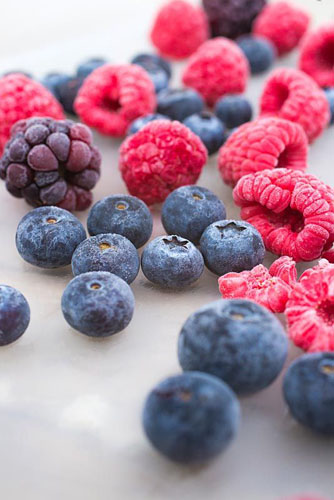Frozen Summer Fruits. Variety of frozen foraged berries. Featuring Blueberries - Vaccinium, Raspberries and Blackberries - Rubus fruticosus - © GAP Photos