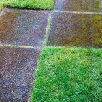Turf squares with pathway