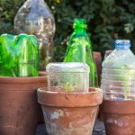 Collection of plastic bottle cloches