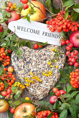 Heart of birdseed, decorated with rose hips and apples with Welcome Friend sign