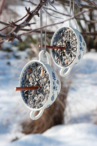Bird food step by step - finished seed holders hanging from tree in winter