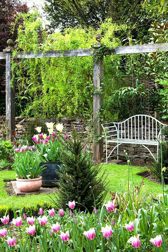 Metal bench under pergola in spring garden. Tulipa in foreground - Priory House -© Lynn Keddie/GAP Photos