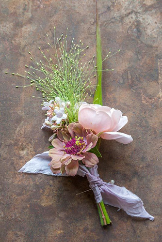 Wedding Buttonhole made with Zinnia elegans 'Queen Red Lime', Rosa 'Ambridge Rose', Panicum elegans 'Frosted Explosion' and Abelia x grandiflora - © GAP Photos