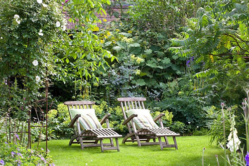Wooden loungers on lawn. Planting includes Rosa and Rhys typhina - © Elke Borkowski/GAP Photos