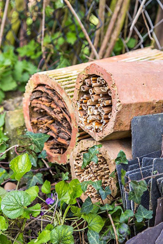 Insect Pipes. Finished product in situ within border - © GAP Photos