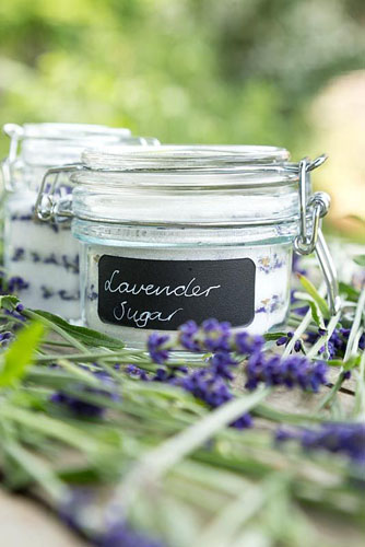 Glass jars containing Lavender Sugar made from Lavandula angustifolia 'Hidcote' flowers - © GAP Photos