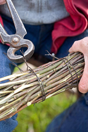 Making a Birch broom - man tying up birch branches with steel wire using pliers - © Robert Mabic/GAP Photos