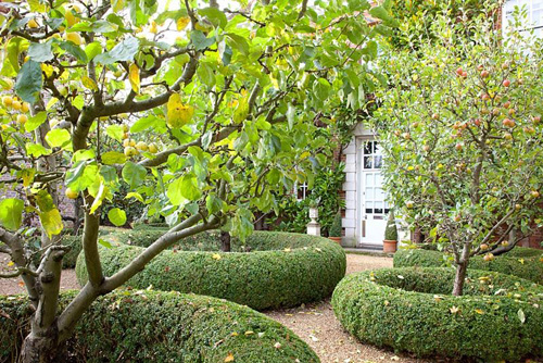 Front garden with apple trees - Malus domestica - © Elke Borkowski/GAP Photos