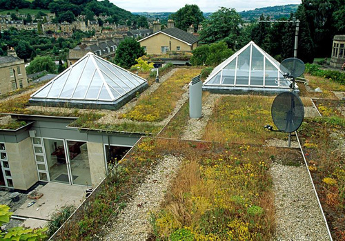 'Living' flat roof in Bath - July - © Charles Hawes/GAP Photos