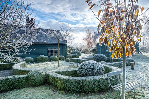 View to rear of house with wrought iron garden seat. Yew and box topiary and dwarf hedges on frosty morning in December - The Mill House, Little Sampford, Essex