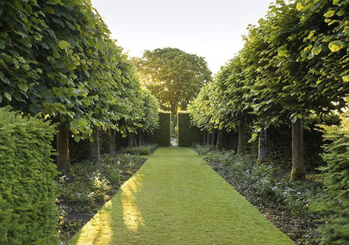 A view of the Lime Allee at Wollerton Old Hall Garden, Shropshire. Tilia platyphyllos 'Rubra' - © GAP Photos/Joe Wainwright