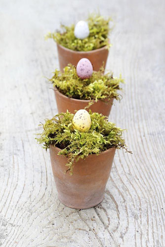 Chocolate Easter eggs in moss lined terracotta pots