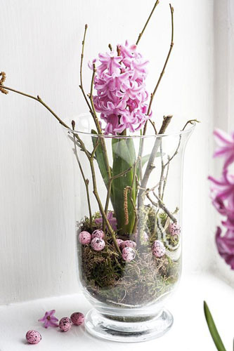 Hyacinth 'Lady Derby' on windowsill in glass jar with easter eggs