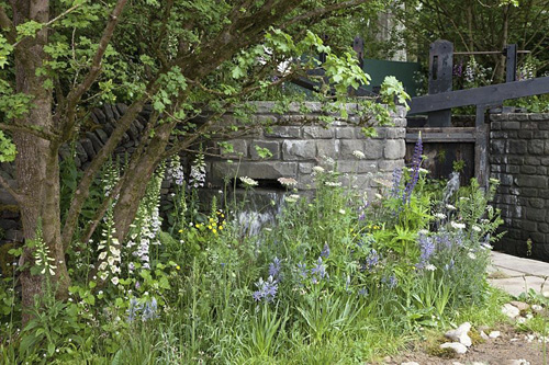 The Welcome to Yorkshire Garden, view of the  planting by the lock which includes Digitalis purpurea, Camassia leichtlinii subsp Caerulea, Daucus carota -Designer: Mark Gregory - Sponsor: Welcome to Yorkshire - © GAP Photos/Annaick Guitteny