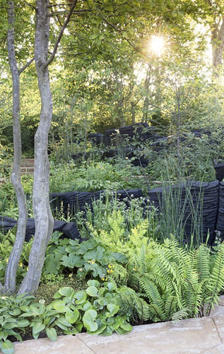 The M and G Garden, sunrise on woodland garden, shade loving plants, sustainable burnt oak timber sculpture by Johnny Woodford, – Designer: Andy Sturgeon - Sponsor: M and G Investments  Chelsea Flower Show 2019 - © GAP Photos/Stephen Studd