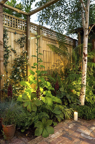 Small London patio garden with mixed foliage border and spotlights