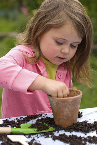 Little girl planting sunflower seeds - © GAP Photos/Richard Bloom