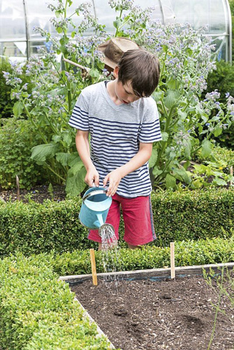 Oscar Isaac, 9, waters newly planted seeds in his vegetable patch - © GAP Photos/Nicola Stocken