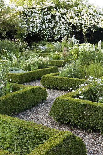 Knot garden with patterned Buxus hedges. White garden - © GAP Photos/Robert Mabic