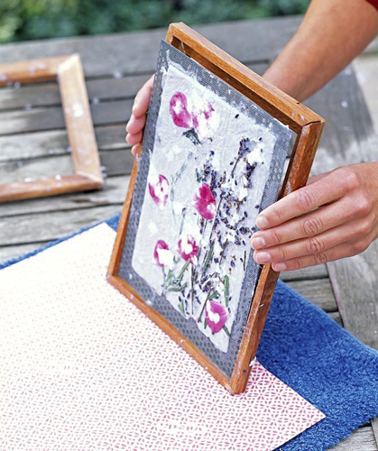 Pressed flowers on paper - © GAP Photos/Friedrich Strauss
