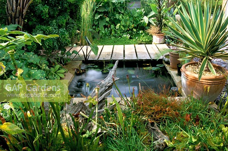 Gap Gardens Formal Pond By Decking With Carnivours