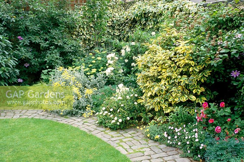 Gap gardens curved brick path edging lawn and mixed for Shrubs for garden borders