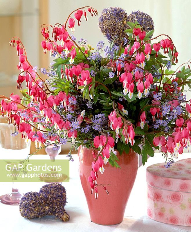 GAP Gardens - Spring bouquet with pink Lamprocapnos spectabilis and ...