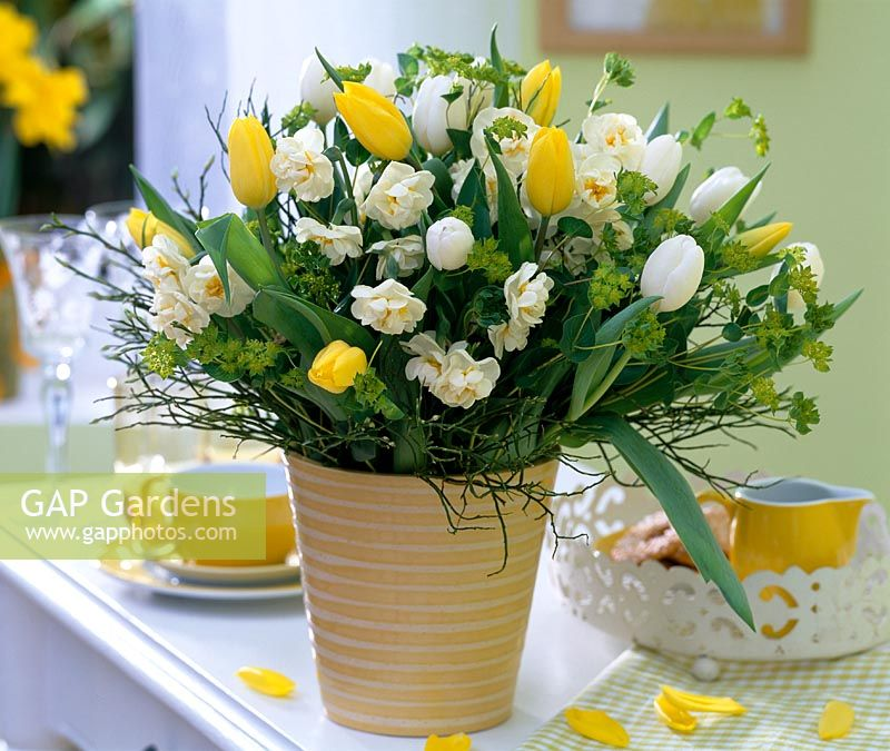 Spring bouquet with Narcissus 'Bridal Crown', Tulipa, Euphorbia and Vaccinium twigs in stripy vase