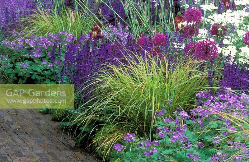 gap gardens geranium 39 philippe vapelle 39 stipa. Black Bedroom Furniture Sets. Home Design Ideas