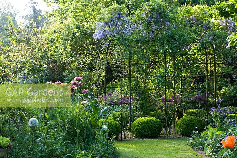 Elegant Metal Pergola Covered With Wisteria In Small Contemporary Cottage Garden Early Summer