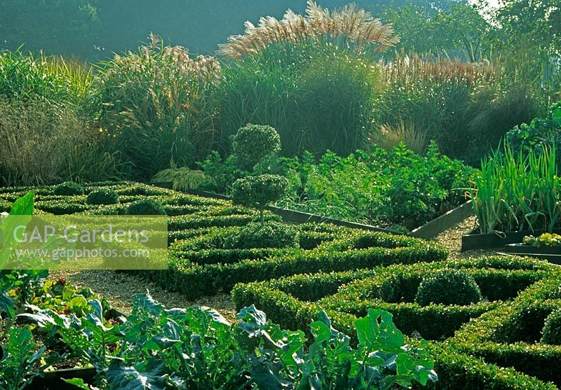 Gap gardens potager with parterre in vegetable garden for Parterre vegetable garden design