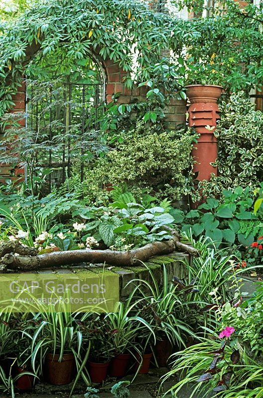 Gap gardens front garden with trompe l 39 oeil gate and mirror behind raised bed with acer - Trompe loeil hoofd bed ...